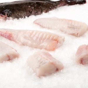 Exotic and deep-sea fish
