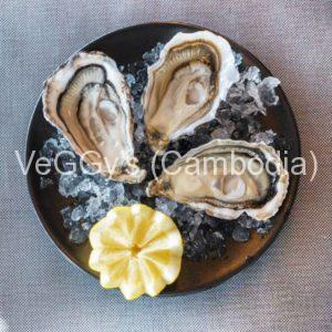 Oysters and other bivalves and molluscs