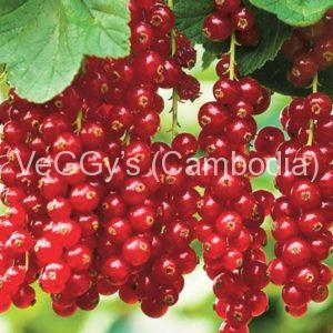 Berries and currants